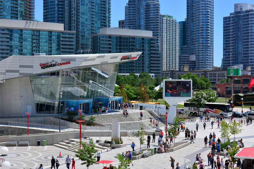 Family Fun Activities in Toronto